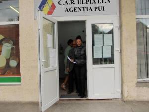 Agenția Pui